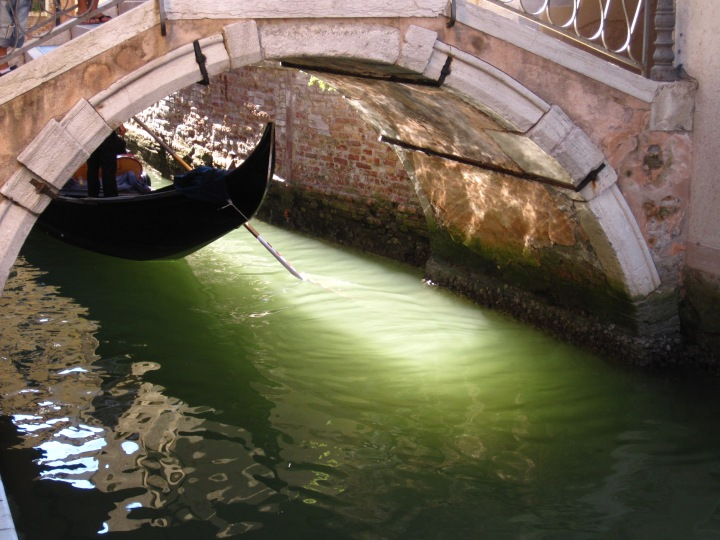 Venice August 2013