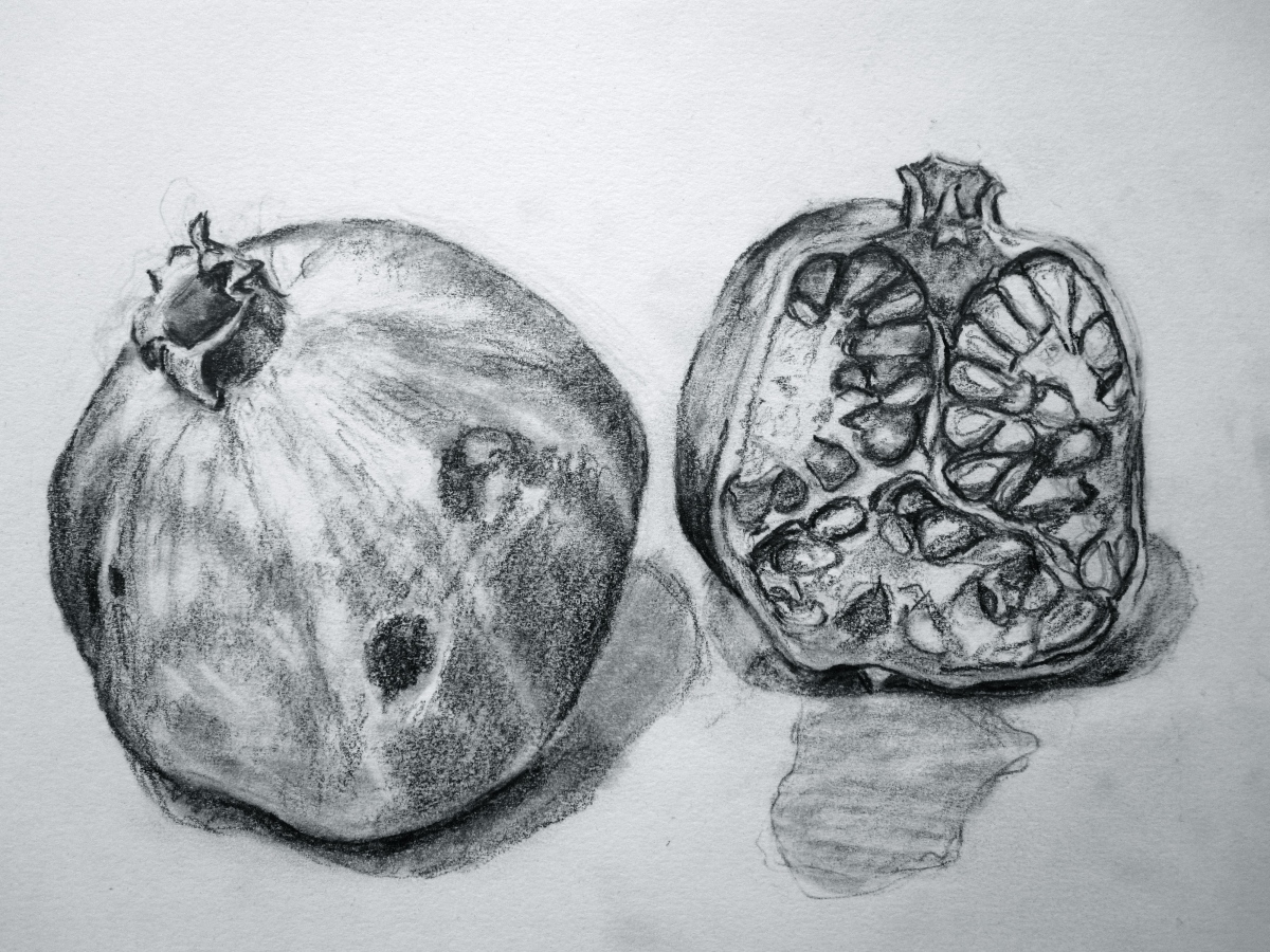 More Sketches - Fruit