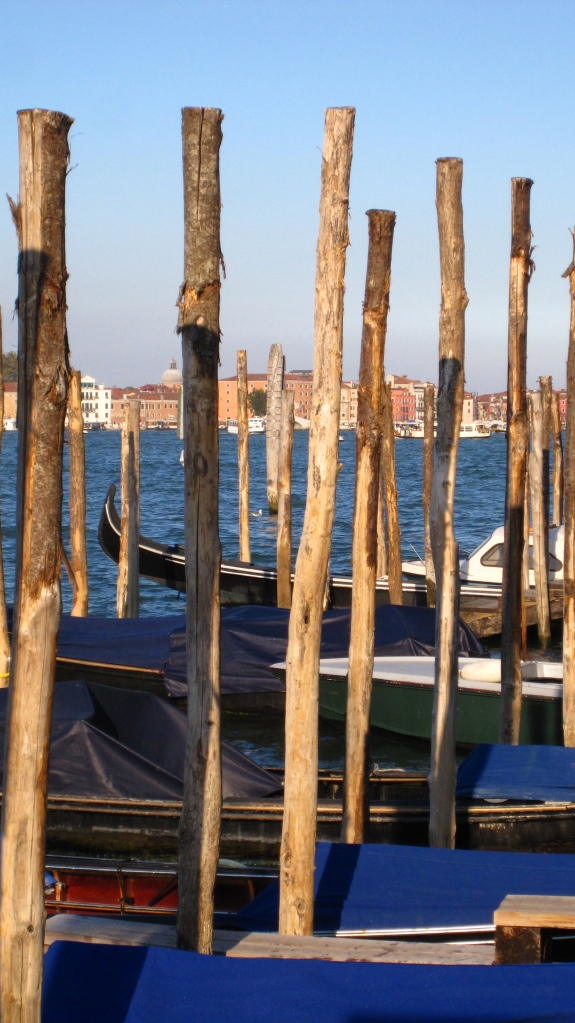 A group of mooring posts,Venice