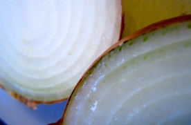 Onion layers
