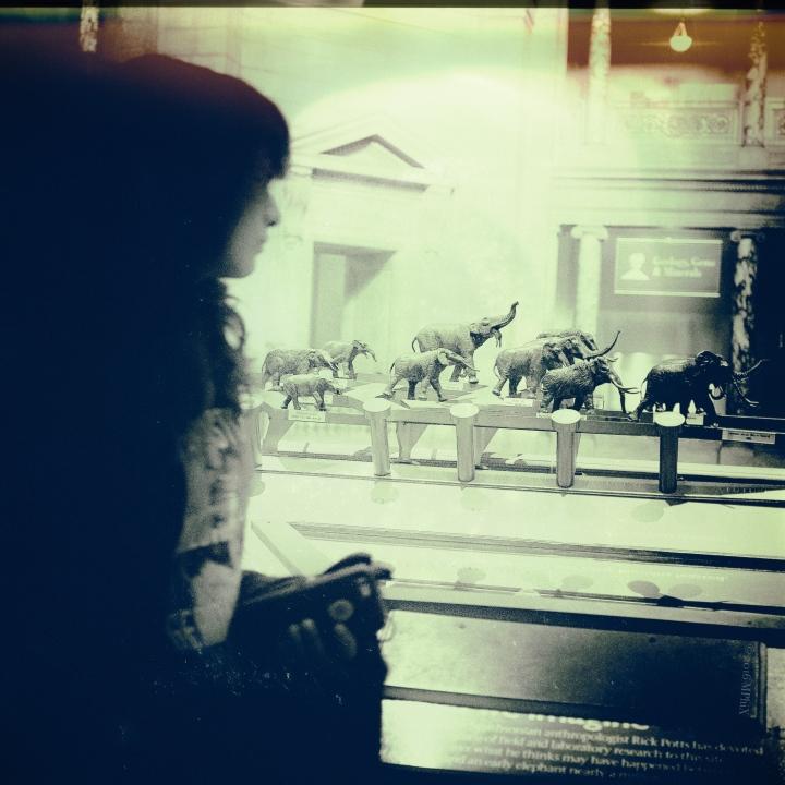 dc-elephant-girl_mphix