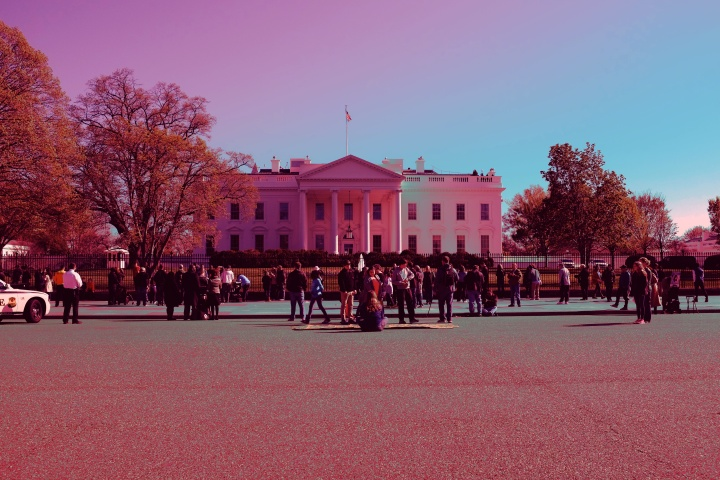 the-pink-white-house
